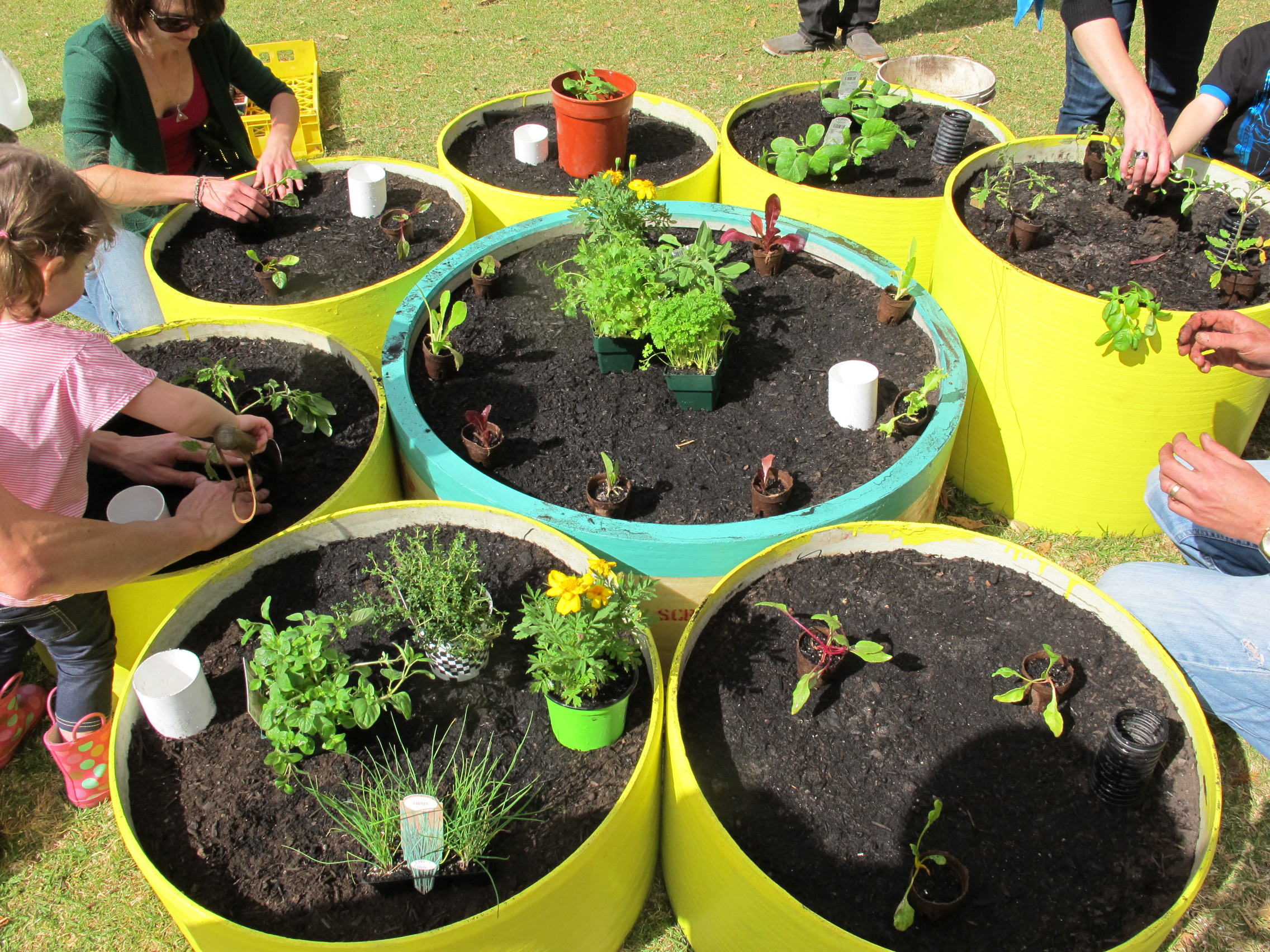 Pop Up Patches Kitchen Garden Education Projects Design Adelaide South Australia